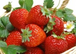 Посадите клубнику на диету