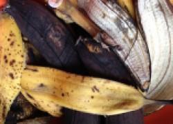 Сушеные банановые корки — отличное удобрение для вашего огорода