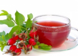 Шиповник – ягоды здоровья