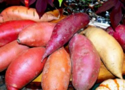 Хочу выращивать батат и топинамбур!