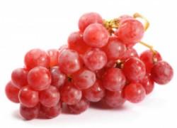 Схемы удобрения плодоносящего винограда