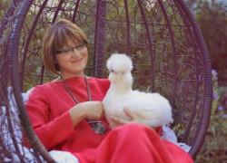 Яна Журавлева и ее шелковые курочки