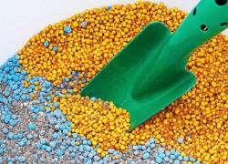 Осмокоты – находка для ленивого садовода