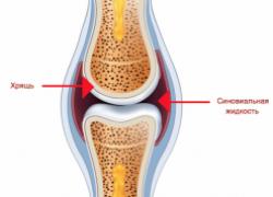 Что такое синовиальная жидкость?