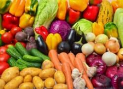Болезни овощей: первая помощь пострадавшим