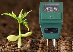 Проверенные средства определения кислотности почвы