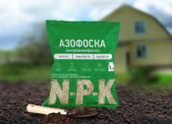 Азофоска – любимое удобрение огородников