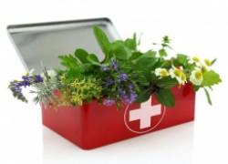 Садовая аптечка на любой случай