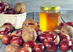 Каштан и мед вам силу вернет