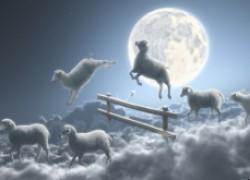 Хороший ночной отдых как лечь спать, если вас мучает…