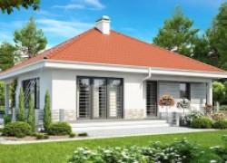Компактный и функциональный одноэтажный дом