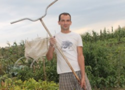 Идея посадки посадки лука, чеснока и моркови