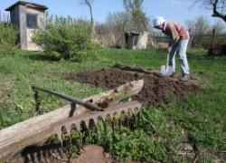Главное о садово-огородной реформе
