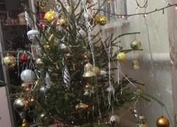 Старая елка еще послужит