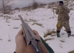 Закрытие охоты на зайца
