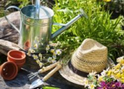Очень нужные гаджеты для садовода