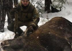 Загоны как основной вид охоты