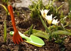 Садоводы, не проспите весну