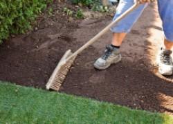 Подготовка почвы под посев газона