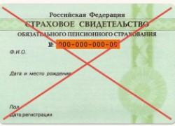 Отмена СНИЛС в России с 2019 года
