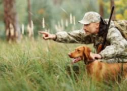 Все охоты хороши − выбирай на вкус