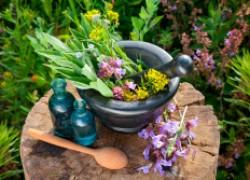 Целебные растения, которые смешивать нельзя