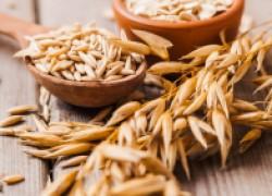 Мощное лекарство в крошечном зернышке пшеницы