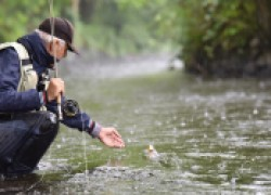 Влияние погоды на клев и поведение рыбы