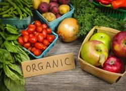 Где это вы видели экологически чистые овощи?