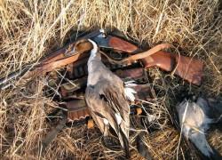 Охотничья этика и культура охоты