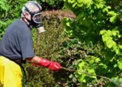 Экологически чистая защита