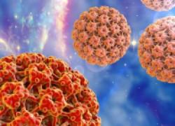 Вирус папилломы человека (ВПЧ): что это такое и как лечить