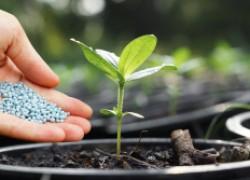 Регулятор засоленности почвы