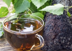 Напиток из чаги: чем полезен настой из березового гриба