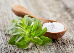 Выращивайте стевию: она заменит сахар