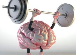 Заставьте свой мозг работать