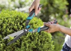 На старт, внимание, МАРШ – работать в сад!
