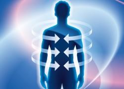 10 факторов о работе нашего иммунитета