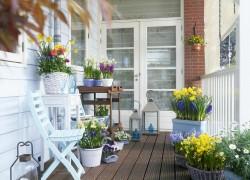 Карантинный цветник на балконе