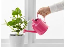 Как смягчить жесткую воду для цветов