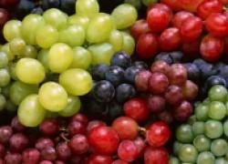 Препараты для винограда