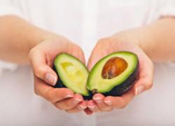 Авокадо – обязательный продукт в рационе