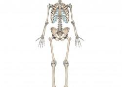 Ревматоидный артрит. что это и как лечить?