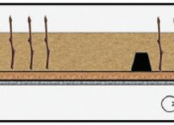 Кильчеватор – просто и удобно