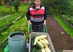 Белые огурцы и фиолетовая картошка Алеси Даниловой