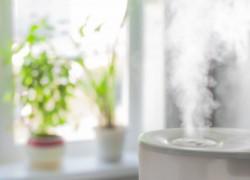 Засуха в квартире, или чем опасен сухой воздух