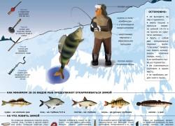 Зимняя рыбалка с нуля
