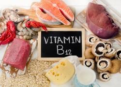 12 продуктов рекордсменов по содержанию витамина В12