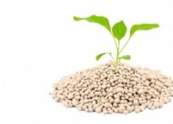 Удобрение, улучшающее почву