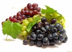 Проверенные сорта винограда и рекомендации по выращиванию